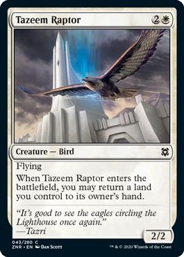 Tazeem Raptor Zendikar Rising Magic the Gathering card